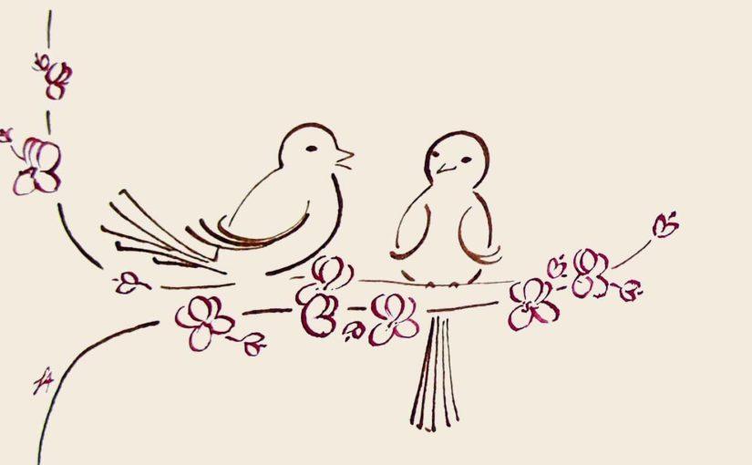 cours-dessin-florence-adam-en-ligne-formation-oiseaux