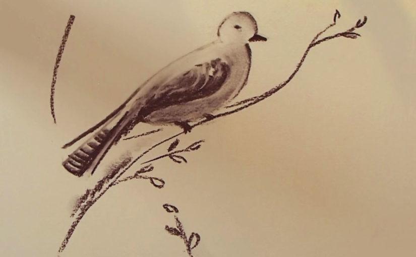 cours dessin internet en ligne dessiner au fusain