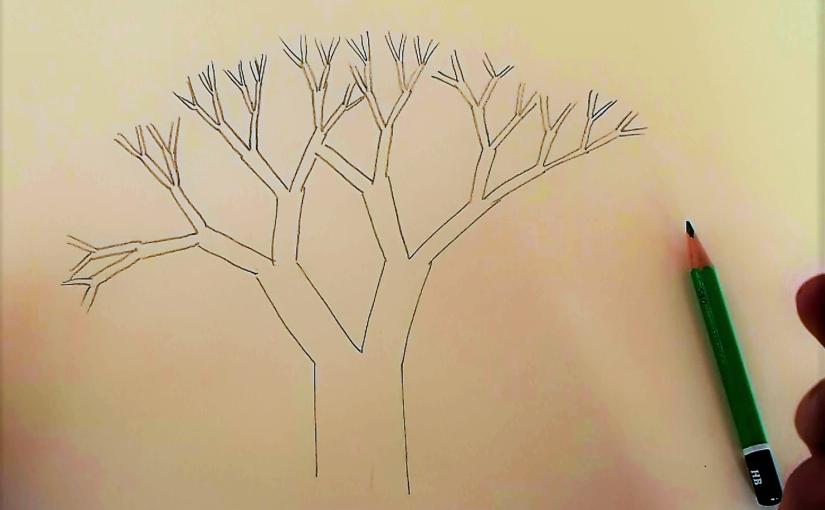 Comment dessiner la structure d'un arbre feuillu ?