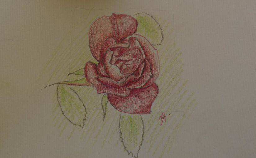 Comment dessiner une rose (fleur) ?