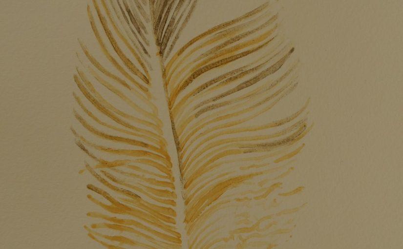 Comment dessiner une plume ?