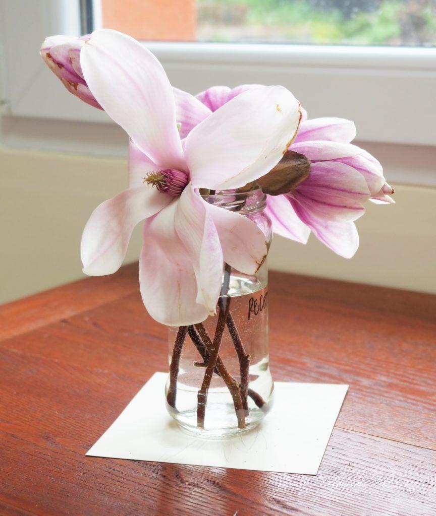 comment-dessiner-magnolia-encre-faite-maison-jus-betterave-recette-naturelle