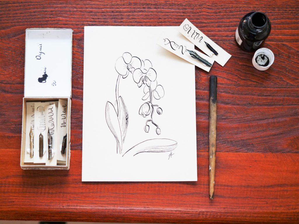 comment-dessiner-plume-et-encre-de-chine-débutant-cours-vidéo