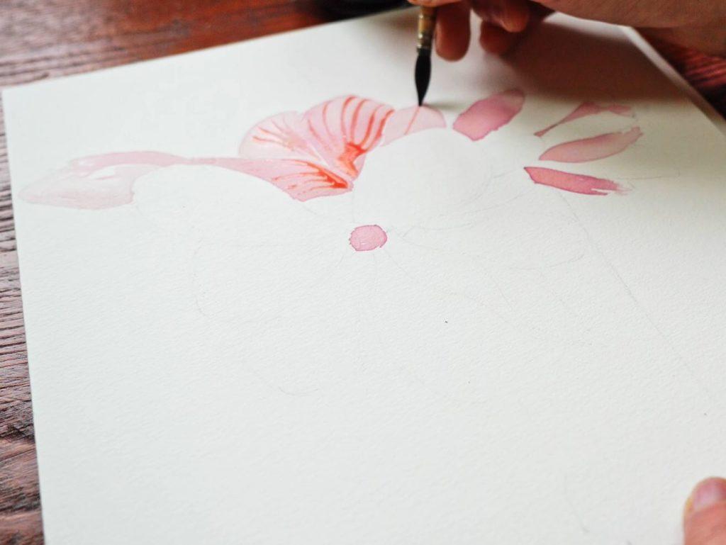 magnolia-détail-fleur-pétale-jus-betterave-encre-naturelle