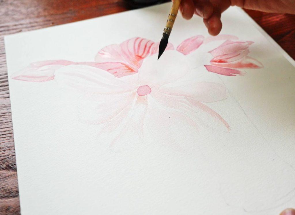 magnolia-encre-diluee-pétale-blanc-fleur-ouverte
