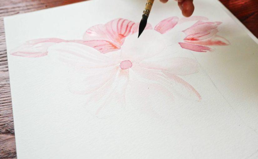 Comment dessiner une fleur de magnolia au jus de betterave ?