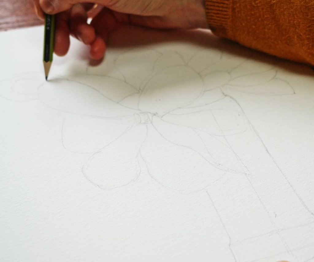 mangolia-stades-croissance-dessin-crayon-nature