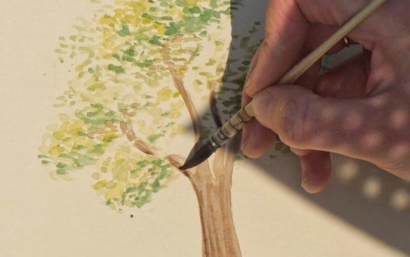 Comment dessiner un arbre en randonnée ?