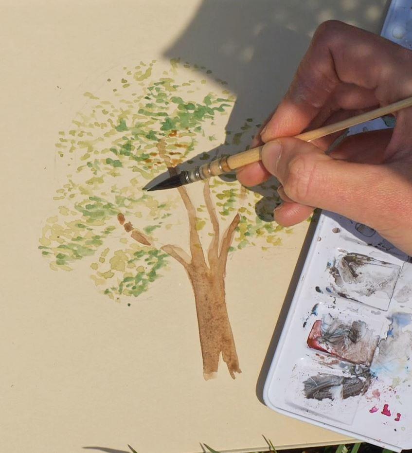 comment-dessiner-un-arbre-dehors-a-laquarelle-feuilles-3couleurs