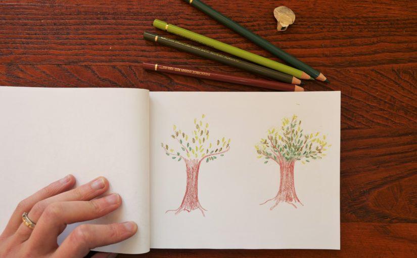 Comment dessiner un arbre au crayon de couleur, en randonnée ?