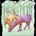 2. Renne - couleurs secondaires - modèle - carnet A4 - coloré - avec fond - carnet-de-coloriage