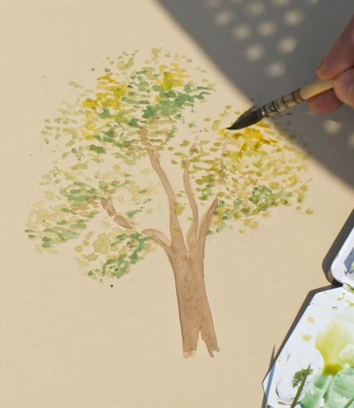 comment-dessiner-un-arbre-dehors-a-laquarelle-feuilles-4couleurs